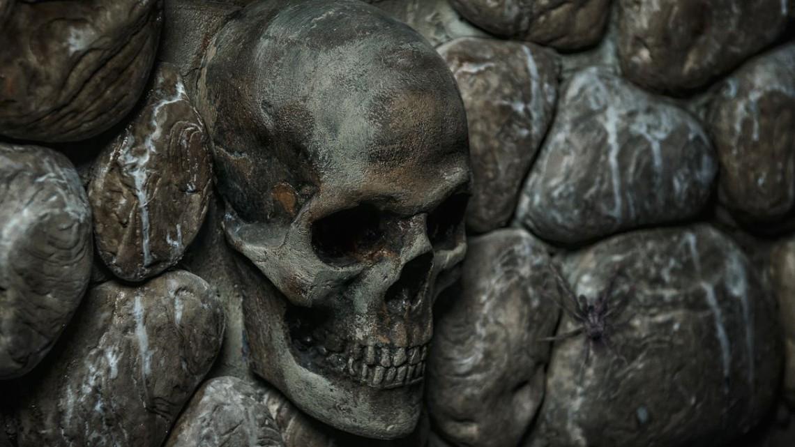 Квест Остров сокровищ - TruExit - Королёв - Отзывы и бронирование